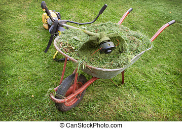 wheelbarrow with grass and petrol trimmer on the lawn