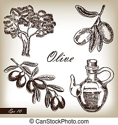 Hand drawn olive set. Vector illustration
