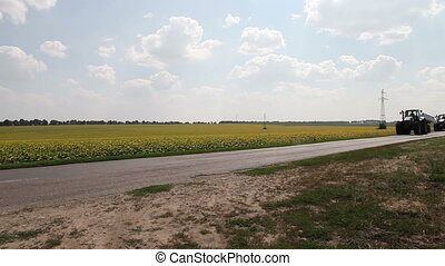 tractor plow drill driving field of sunflowers - three...