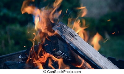 Burning wood in fireplace - Crest of flame on burning wood...