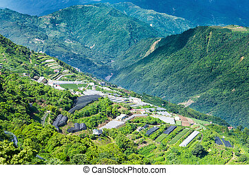 Farm in Taiwan