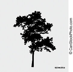 Tree silhouettes Vector illustration