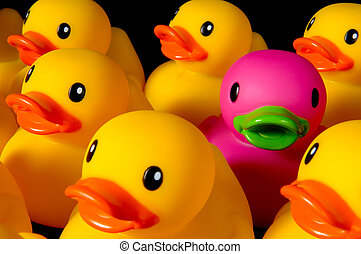 Dare to be different - rubber ducks on black - Purple rubber...