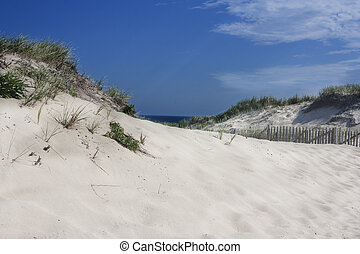Race Point, Provincetown, MA - Race Point beach,...