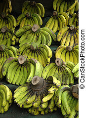 banana - fresh banana that sold in traditonal market