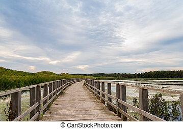 A wooden bridge over a marsh in the Cavendish Dunelands...