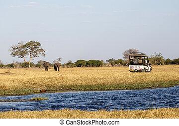 Chobe N.P. Botswana, Africa - Chobe National Park, Botswana,...