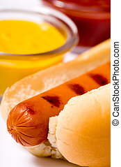 Hot Dog - Freshed grilled hot dog with mustard and ketchup...