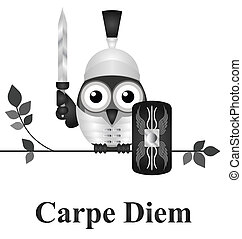 Seize the Day - Latin Seize the Day message isolated on...