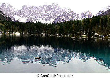 Lake of Fusine with the snowy Alps in the background -...