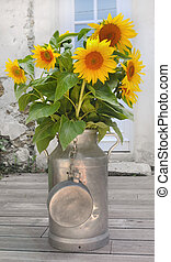 sunflowers in a milk can - sunflower bouquet in a milk can...