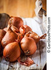 shallot - Fresh shallot on the wooden table