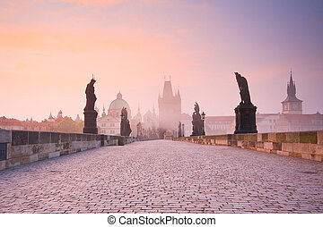 Prague, Czech Republic. - Charles Bridge in Prague, Czech...