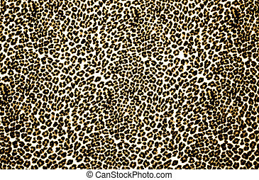 Leopard Print - Animal print background