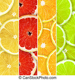 fruits - Collection of fresh summer fruits in the form of...