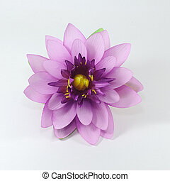 Beautiful lotus, Artificial flowers