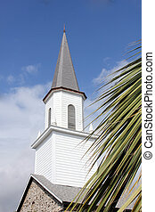 hawaiian church - a white hawaiian church