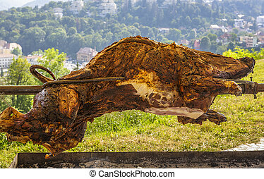Roasting wild boar - Wild boar carcass roasting on a...