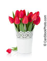 rojo, tulipanes, maceta