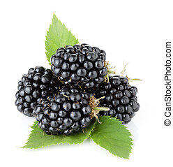 Ripe blackberry fruits with green leaves. Isolated on white...