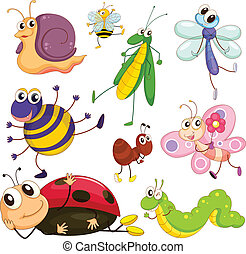 Different insects - Illustration of the different insects on...