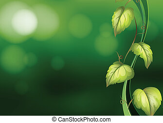 Vine background - Illustration of a vine with green...