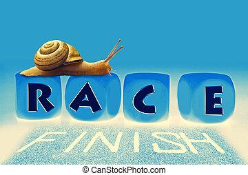 Snail Race, Concept