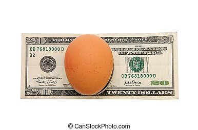 Brown egg on twenty dollar bill isolated