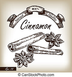 Kitchen herbs and spices. Cinnamon hand drawn illustration...