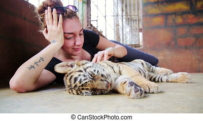 Tourist people playing with baby tiger temple, bangkok,...