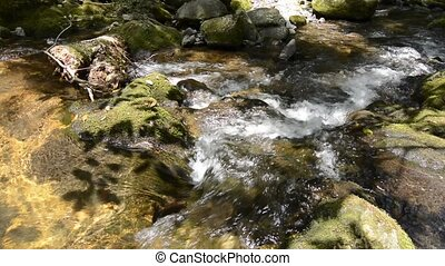 Brook complicated flowing between mossy stone in the...