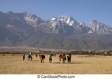 Tibetan nomads at the Himalaya mountains