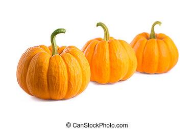 Fresh orange pumpkins, isolated on white background