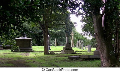 Very old christian cemetery - Wind moving tree branches in...