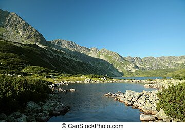 Valley of five ponds in the Tatras - Small pond in the...