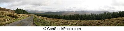 wicklow, mountains