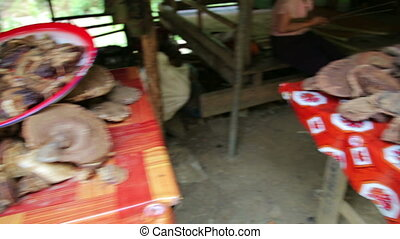 Selling Illegal Magic Mushroom Openly in Local Market, Laos