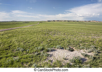 fox den in Pawnee Grassland - fox den in Pawnee National...