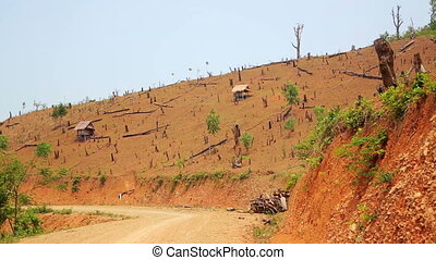 Deforestation in Laos, Cutting Rainforest, Naked Earth