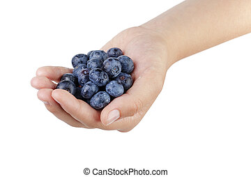 female teen hand holding washed blueberries, isolated on...