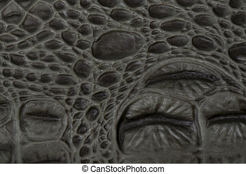 Crocodile bone skin texture background This image of...