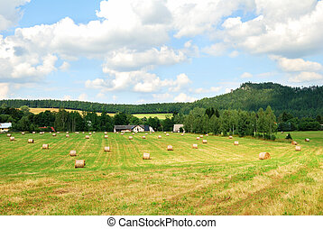 Mowed farm field with bales of hay