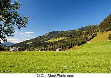 Alpine chalets and meadows under the mountains