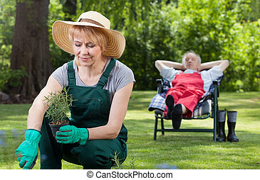 Woman planting flowers and resting man - Woman planting...