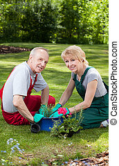 Marriage planting flowers - Vertical view of a marriage...