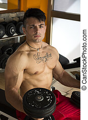 Handsome muscular young man lifting weights