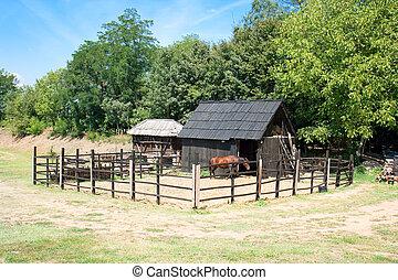 cavalo, estável, vila, fazenda, Sérvia