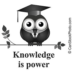 Knowledge - Monochrome knowledge is power message isolated...