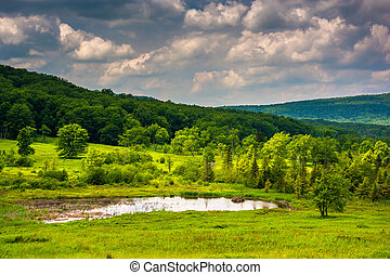 Small pond at Canaan Valley State Park, West Virginia
