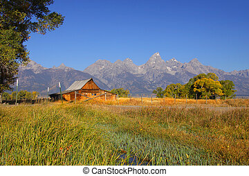 Mormon barn - Old Mormon barn in Grand Tetons